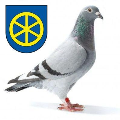 Oblastné združenie chovateľov poštových holubov TRNAVA
